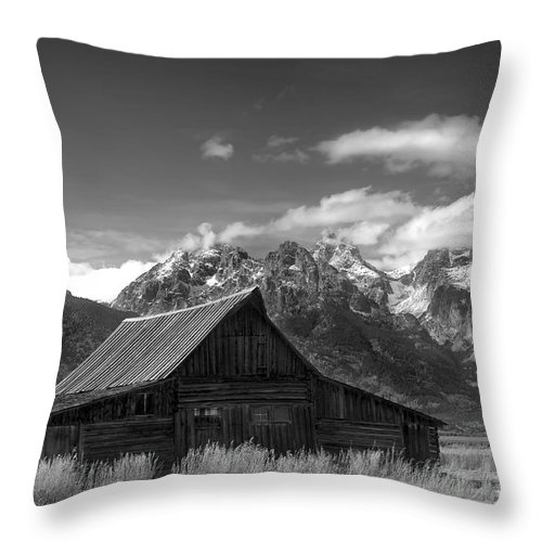 Old Barn Throw Pillow featuring the photograph Rugged Life by Wildlife Fine Art