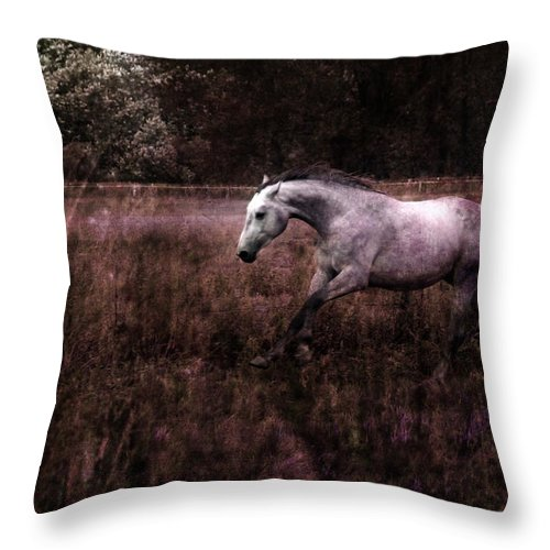 Grey Horse Throw Pillow featuring the photograph Running Through The Purple World by Angel Ciesniarska