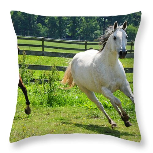 Two Horses Throw Pillow featuring the photograph Running Wild by Paul Ward
