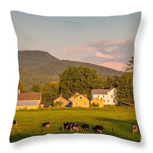 Agriculture Throw Pillow featuring the photograph Rupert Vermont Dairy Farm by Susan Cole Kelly
