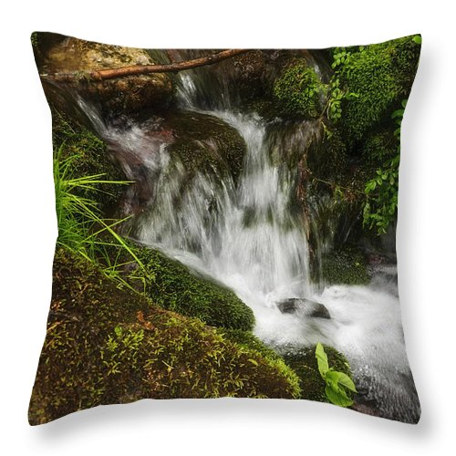 (relaxed Or Relaxing) Throw Pillow featuring the photograph Rushing Mountain Stream And Moss by Debra Fedchin