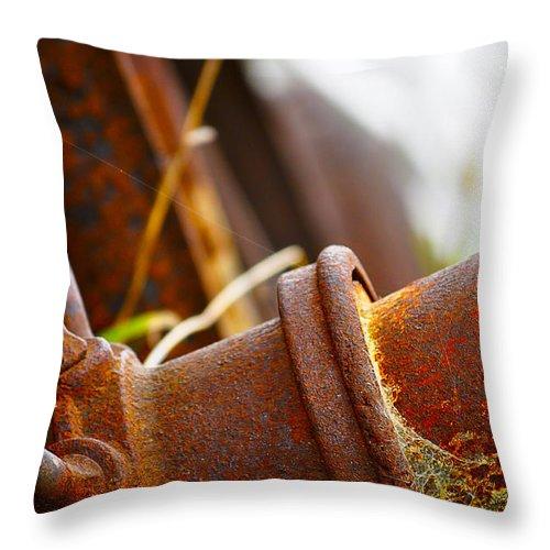 Blumwurks Throw Pillow featuring the photograph Rust by Matthew Blum
