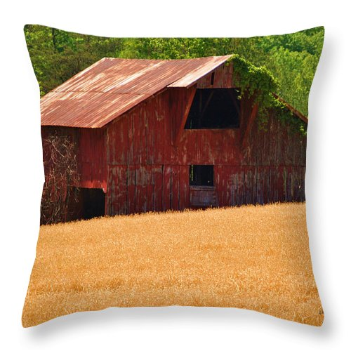 Barn Throw Pillow featuring the photograph Rusty Coat by Eric Liller