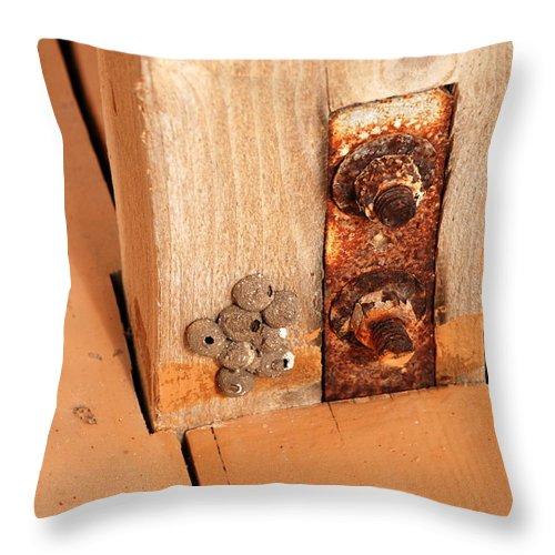 Rust Throw Pillow featuring the photograph Rusty by Larry Ward