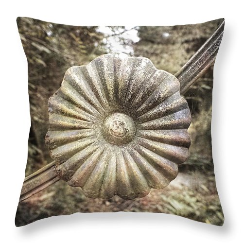 Rust Throw Pillow featuring the photograph Rusty Rosette by Melissa Bittinger