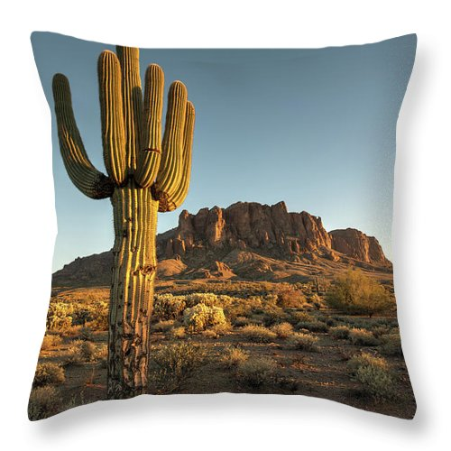 Saguaro Cactus Throw Pillow featuring the photograph Saguaro Cactus And Superstition by Kjschoen