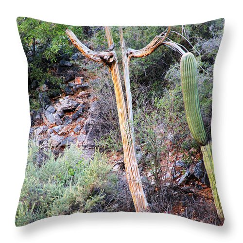 Tucson Throw Pillow featuring the photograph Saguaro Skeleton by Jemmy Archer
