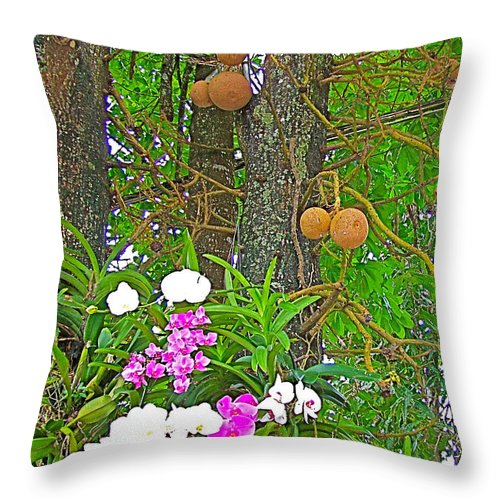 Sala Tree And Orchids At Buddhist University In Chiang Mai Throw Pillow featuring the photograph Sala Tree And Orchids At Buddhist University In Chiang Mai-thail by Ruth Hager