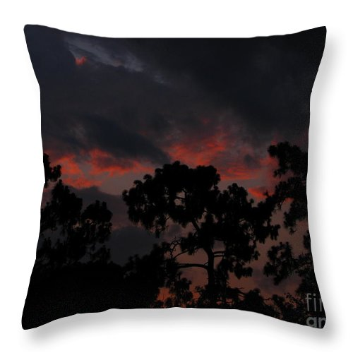 Art For The Wall...patzer Photography Throw Pillow featuring the photograph Salmon Sunset by Greg Patzer
