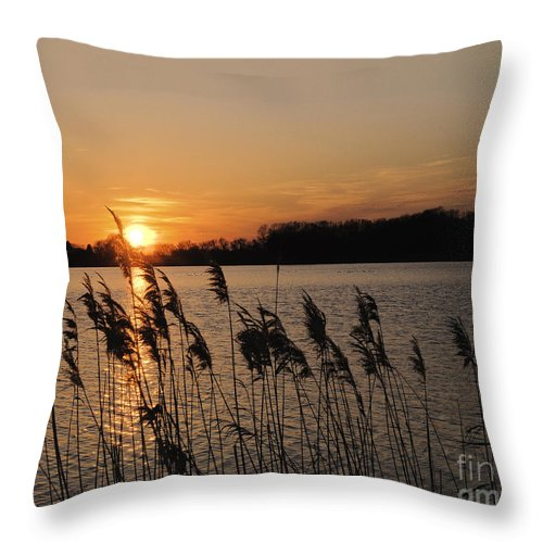 Sunset Throw Pillow featuring the photograph Salt Marsh Sunset by Timothy Flanigan
