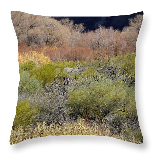 Botanical Throw Pillow featuring the photograph Salt River Spring by Lynda Lehmann