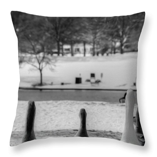 Ducks Throw Pillow featuring the photograph Salute by Kelvin Booker