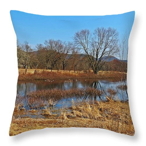 Throw Pillow featuring the photograph Sanctuary by MTBobbins Photography