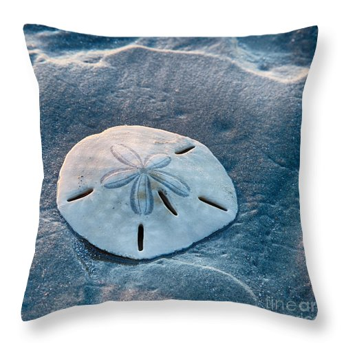Bull Island Throw Pillow featuring the photograph Sand Dollar by Carrie Cranwill