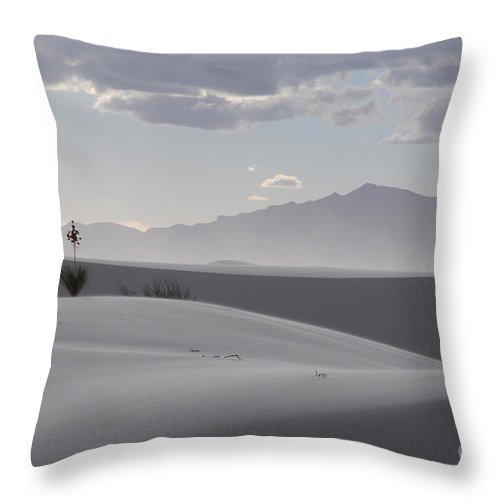 White Sands Throw Pillow featuring the photograph Sand Dunes Light And Shadow by Vivian Christopher