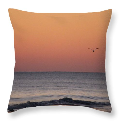 Fauna Throw Pillow featuring the photograph Sanderlings And A Seagull by Robert Banach