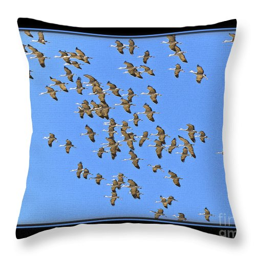 Bird Throw Pillow featuring the photograph Sandhill Cranes In Mass by Larry White