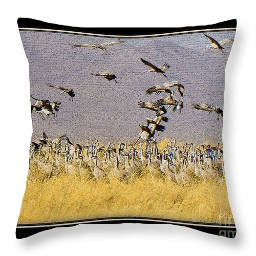 Bird Throw Pillow featuring the photograph Sandhill Cranes On The Ground by Larry White