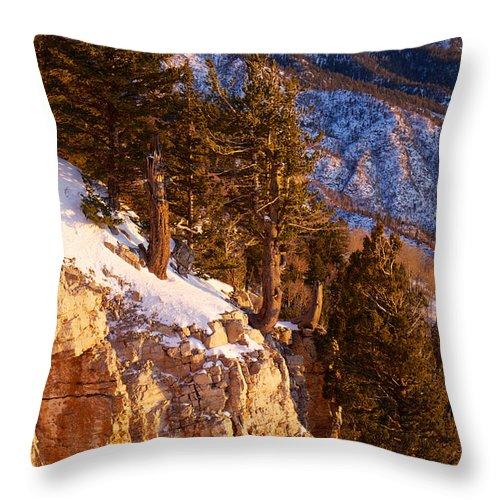 Mountain Throw Pillow featuring the photograph Sandia Peak Summit Albuquerque New Mexico by Mary Lee Dereske