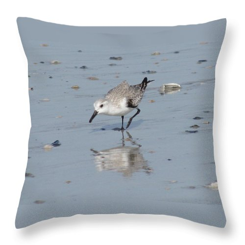 Landscape Throw Pillow featuring the photograph Sandpiper Reflection by Ellen Meakin