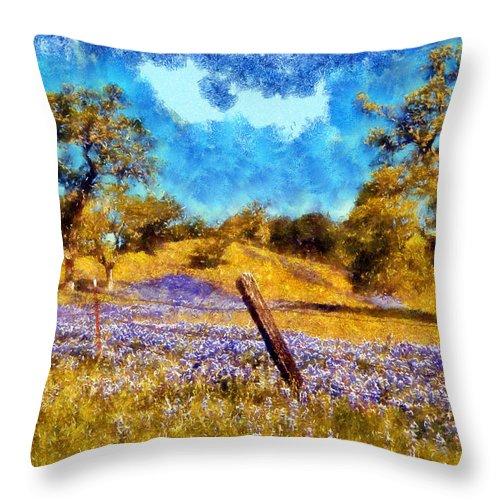 Santa Rosa Throw Pillow featuring the digital art Santa Rosa Field by Kaylee Mason