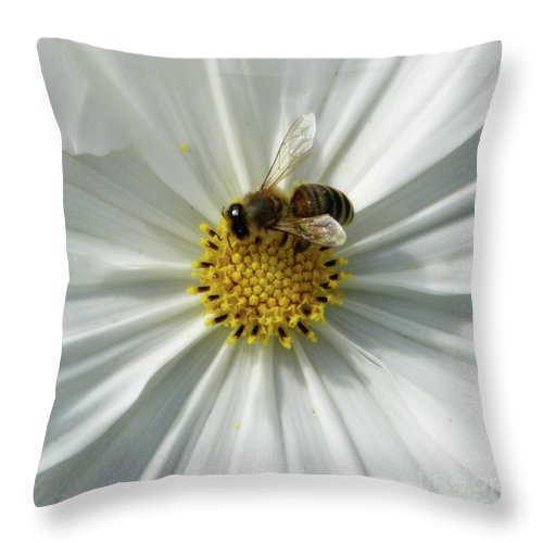 Bee Throw Pillow featuring the photograph Satin Sheets by Linda Shafer