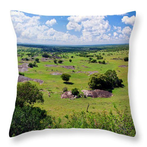 Africa Throw Pillow featuring the photograph Savanna Landscape In Serengeti by Michal Bednarek