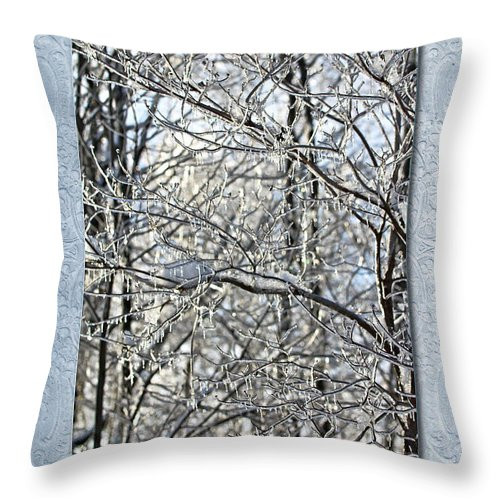 Wedding Throw Pillow featuring the photograph Save The Date - Winter Wedding by Mother Nature