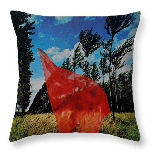 Scarf Throw Pillow featuring the photograph SCARF in the WINDS by Rob Hans