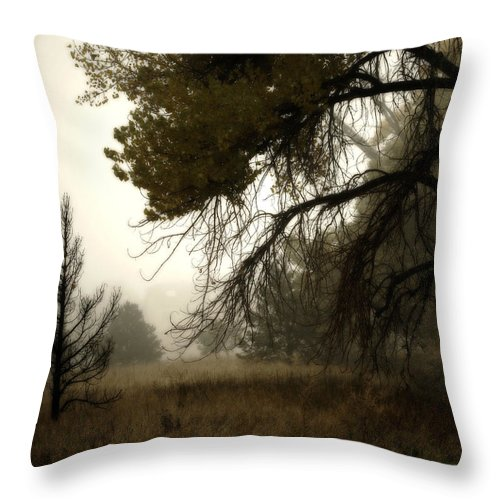Fog Throw Pillow featuring the photograph Scary Trees by Marilyn Hunt