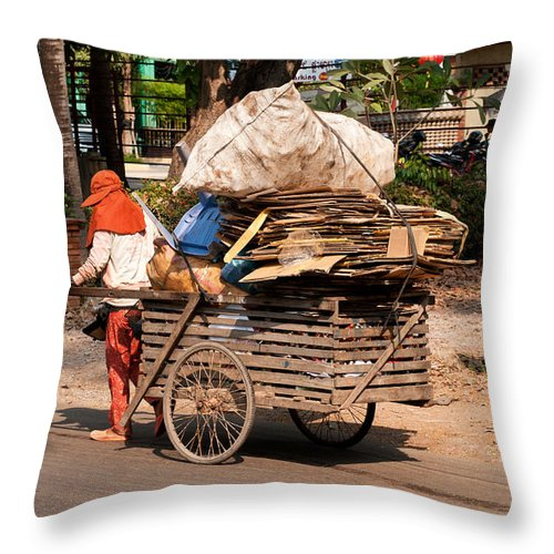 Cambodia Throw Pillow featuring the photograph Scavenger by Rick Piper Photography