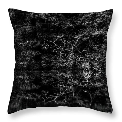 Lake Throw Pillow featuring the photograph Scenic And Twisted by Thomas Young