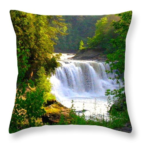 Falls Throw Pillow featuring the photograph Scenic Falls by Rhonda Barrett