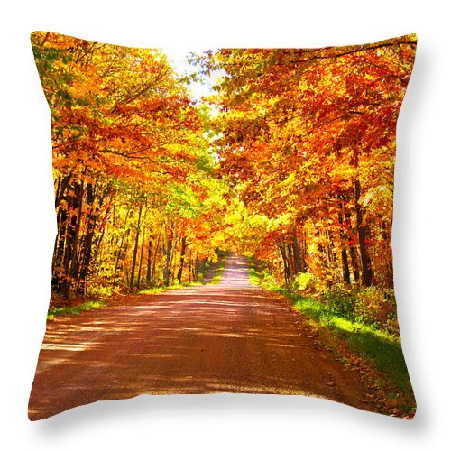 Road Throw Pillow featuring the photograph Scenic Tour by Tiffany Erdman