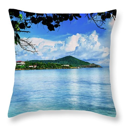 Photography Throw Pillow featuring the photograph Scenic View Of The Sea, St. Johns Bay by Panoramic Images