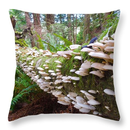 Canada Throw Pillow featuring the photograph Schroom by Til Mikal