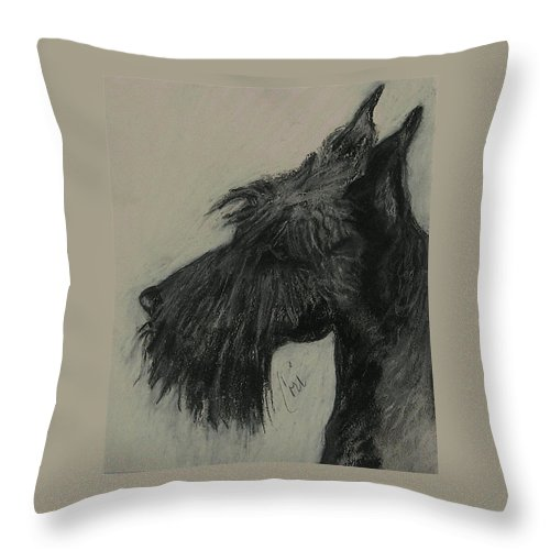Drawing Throw Pillow featuring the drawing Scottish Delight by Cori Solomon