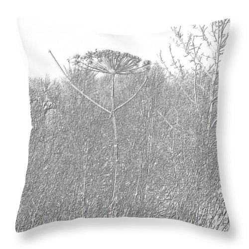 Thistle Throw Pillow featuring the photograph Scottish Thistle by James Potts