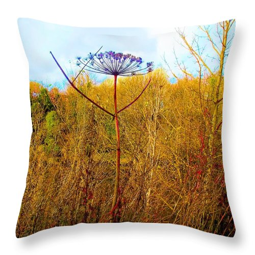 Thistle Throw Pillow featuring the photograph Scottish Thistle On The Firth by James Potts
