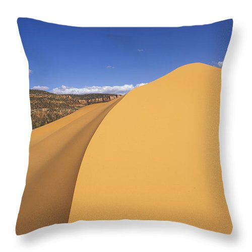 Utah Throw Pillow featuring the photograph Sculpted Sand by Susan Rovira