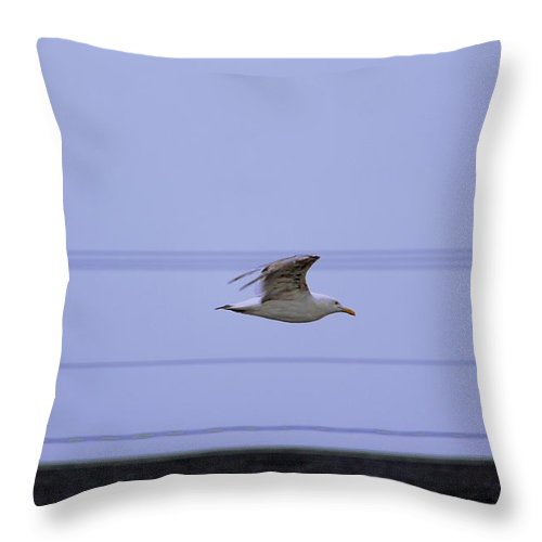 York Maine Throw Pillow featuring the photograph Sea Gull Over Roof Top At Long Sands Beach York Maine by Michael Saunders