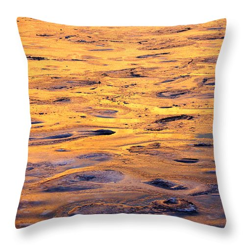 Sea Throw Pillow featuring the photograph Sea Ice Forming by Tom Vooght