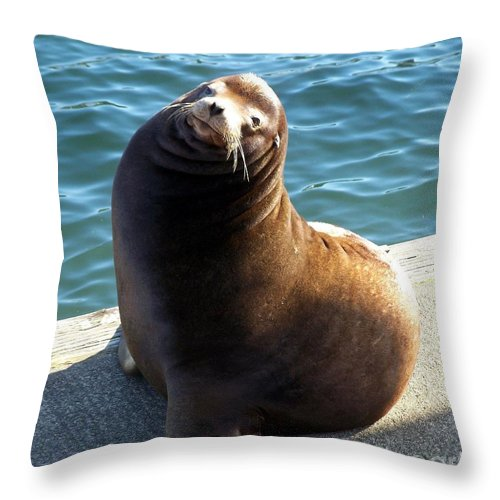 Sea Lion Basking In The Sun Throw Pillow featuring the photograph Sea Lion Basking In The Sun by Chalet Roome-Rigdon