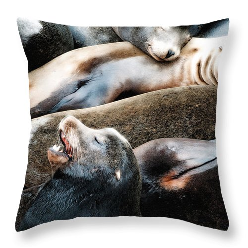 Sea Lion Throw Pillow featuring the photograph Sea Lion Dreams by Gwyn Newcombe