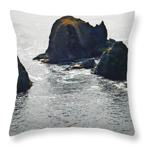 Sea Mounts Throw Pillow featuring the photograph Sea Mounts by Frank Wilson
