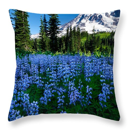 Mount Rainier Throw Pillow featuring the photograph Sea Of Blue by Dan Mihai