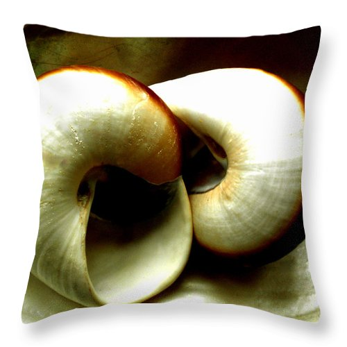 Colette Throw Pillow featuring the photograph Sea Shells Meeting by Colette V Hera Guggenheim