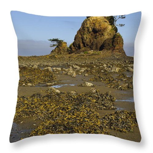 America Throw Pillow featuring the photograph Sea Stack by John Shaw