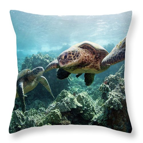Underwater Throw Pillow featuring the photograph Sea Turtles by M Swiet Productions