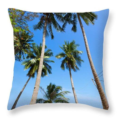 Trees Throw Pillow featuring the photograph Sea View by Alexey Stiop